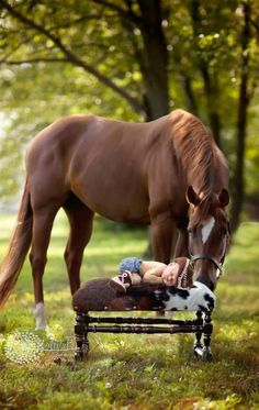 Baby pictures newborn country horses ideas for 2019 Cute Horses, Pretty Horses, Horse Love, Beautiful Horses, Animals Beautiful, Horse Girl, Horse Pictures, Animal Pictures, Cute Pictures