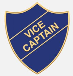 'Vice Captain' shield badge with enamel infill, gold plated words and a superior Ballou clutch fixing. Various colours are available. *colours may vary slightly in shade due to differing monitor colours and manufacturing processes Size Badges, Monitor, Enamel, Colours, Words, Shop, Polish, Name Badges, Badge