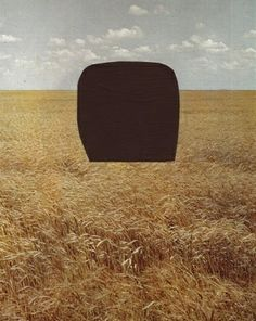 Brion Nuda Rosch, Medium Size Rock Placed on Field (Country Countryscape), 2007/09