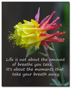 Life is not about the amount of breaths you take. It's about the moments that take your breath away.