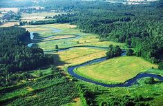 Rzeka Amazonka.
