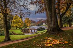 Stourhead, Wiltshire, England (by Phil Selby)