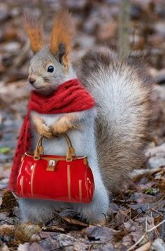 Everyone loves a nice bag and a knitted cashmere scarf.
