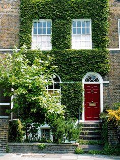 Fachada Verde com Porta Vermelha
