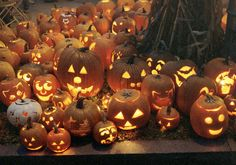 Halloween, autumn, fall, pumpkin e pumpkins