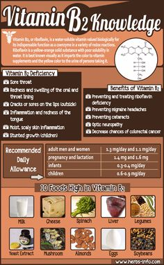 Vitamin B2 Knowledge - Herbs Info                                                                                                                                                                                 More