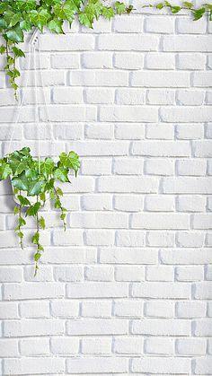 Pop Art Wallpaper, Plant Wallpaper, Framed Wallpaper, Flower Background Wallpaper, Aesthetic Pastel Wallpaper, Flower Backgrounds, Photo Backgrounds, Aesthetic Wallpapers, Wallpaper Backgrounds