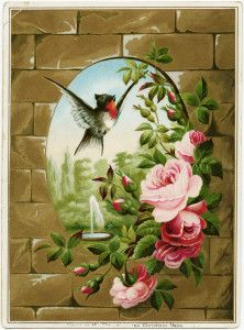 vintage bird roses clipart, Victorian card printable, free vintage clip art, old roses illustration, bird flowers brick wall image