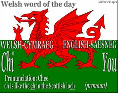 #Welsh Word of the Day: Chi/ #You