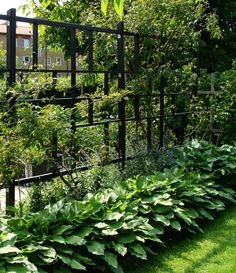 Modern Trellis Design for Beautiful Garden 5 Ways to Add Style With a Garden Trellis Modern Trellis design for beautiful garden. A garden trellis is normally used only for providing a framework on … Modern Garden Design, Contemporary Garden, Landscape Design, Modern Design, Landscape Architecture, Architecture Design, Trellis Design, Back Gardens, Outdoor Gardens