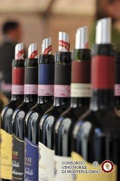 Vino Nobile di Montepulciano, one of the top Italian red wines