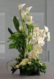 Interflora® Fleurop® Italia, Cezanne. Calla lilies, anthuriums and phalaenopsis orchids arrangement http://www.interflora.it/Prodotti/2/Italia/7849/C/Prestige/Cezanne.aspx
