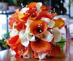orange and white calla lillies... perhaps a little more white?