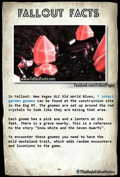 Fallout Fallout Tips, Fallout Lore, Fallout Facts, Fallout Funny, Vault Tec, Overwatch Comic, Fallout New Vegas, Geek Games, Post Apocalypse