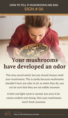 Fresh mushrooms have very faint and light scent, rotten mushrooms on the other hand has an easily detectable odor. So before you cook mushrooms that has been in the storage for some time, whether at home or in stores, smell them first. | Discover more about medicinal mushrooms at ultimatemedicinalmushrooms.com
