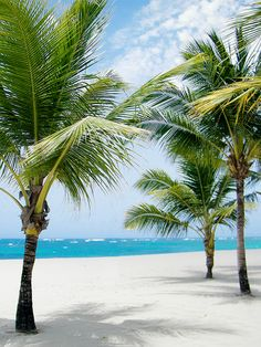 Win some couples R&R in the Dominican Republic from @oysterhotels, @airfarewatchdog, and @gozengo! http://r29.co/1TZzWyB