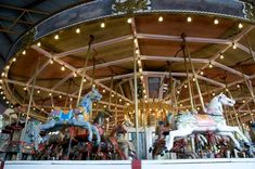 This carousel in Canberra, Australia was made by Herbert Thomson of Armadale, Victoria, for German showman Anton Weniger. It features four rows of four abreast horses along with two elephant carriages. Australian Capital Territory, Great Walks, Central City, Painted Pony, Merry Go Round, St Kilda, Carousels, Family Adventure, Amusement Park