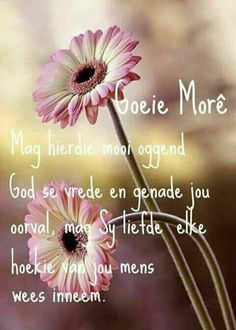 Morning Blessings, Good Morning Wishes, Day Wishes, Good Morning Inspirational Quotes, Good Night Quotes, Lekker Dag, Evening Greetings, Afrikaanse Quotes, Goeie More