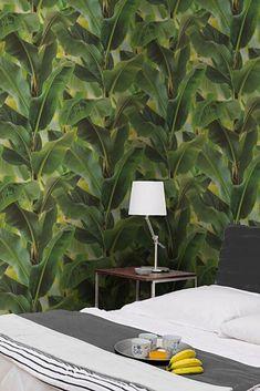 Vale | Le lussureggianti piante di banana trasmettono l'inconfondibile sensazione di essere ai tropici. Queste foglie sembrano davvero vere e trasformano la tua stanza in un giardino tropicale. Relax, Plant Leaves, Plants, Wallpaper Patterns, Wall Papers, Tropical Wallpaper, Bedrooms, Yurts, Paper Envelopes
