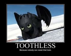 New how to train your dragon funny toothless faces 32 Ideas Httyd Dragons, Dreamworks Dragons, Cute Dragons, Disney And Dreamworks, Toothless And Stitch, Toothless Dragon, Hiccup And Toothless, Toothless Funny, Film Anime