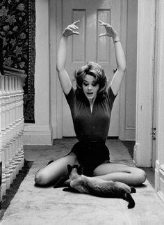 Jane Fonda tries to impress her feline friend. It's hard to impress a Siamese cat!