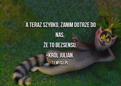 Polish Memes, Black Wallpaper, Best Memes, Harry Potter, Jokes, Inspirational Quotes, Humor, Disney, Quotes