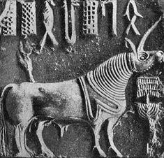 Google Image Result for http://www.strangehistory.net/blog/wp-content/uploads/2011/04/indus-unicorn.jpg