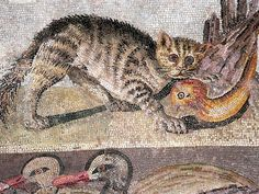 Colorful Cat Mosaic from a dining room (triclinium) in the House of the Faun in Pompeii by mharrsch, via Flickr