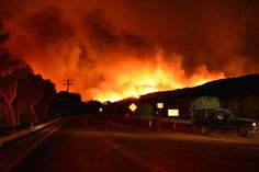 305 Best California Wildfires images