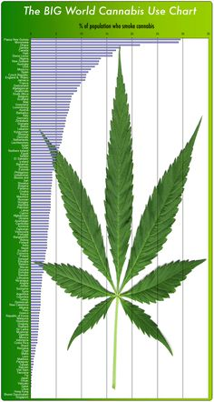 Cannabis Use Around The World