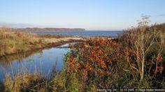 Autumn, beautiful colors, Baaring Vig #Båring #Asperup #Danmark #Fyn #Middelfart