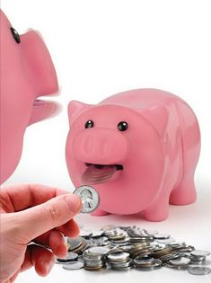 Hungry Piggy Bank Eats Coins for Lunch Money Bank, Butterfly Fairy, Cute Piggies, Chicken Feed, Flying Pig, This Little Piggy, In Case Of Emergency, Weird Pictures, You Gave Up