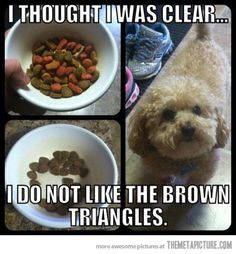 This made me laugh!!