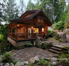 Cabin in the woods~