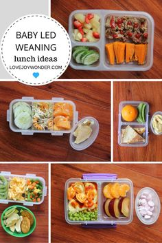 baby led weaning lunch ideas august 17