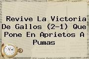http://tecnoautos.com/wp-content/uploads/imagenes/tendencias/thumbs/revive-la-victoria-de-gallos-21-que-pone-en-aprietos-a-pumas.jpg Queretaro Vs Pumas. Revive la victoria de Gallos (2-1) que pone en aprietos a Pumas, Enlaces, Imágenes, Videos y Tweets - http://tecnoautos.com/actualidad/queretaro-vs-pumas-revive-la-victoria-de-gallos-21-que-pone-en-aprietos-a-pumas/