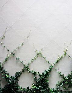 Landscape Design – Vine Garden Market
