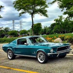 ford classic cars for sale Classic Mustang, Ford Classic Cars, Ford Mustang Fastback, Mustang Cars, Cx 500, Old Muscle Cars, Old School Cars, Car Ford, Ford Trucks