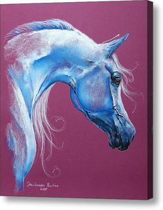 Magic Arabian Acrylic Print By Paulina Stasikowska Horse Drawings, Animal Drawings, Art Drawings, Horse Sketch, Arabian Art, Watercolor Horse, Horse Artwork, Blue Horse, Unicorn Art