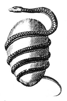 The Orphic Egg (the World Egg/the Cosmic Egg) and Kundalini serpent (the Life Force/the Creative Spirit). Also a symbol of Soul's Initiation into Mystery/Transformation (by breaking the shell) that awakens Kundalini. Kundalini Tattoo, Cosmic Egg, Sketch Tattoo Design, Real Tattoo, Eye Of Horus, Ancient Mysteries, Egg Art, Magical Creatures, Magick