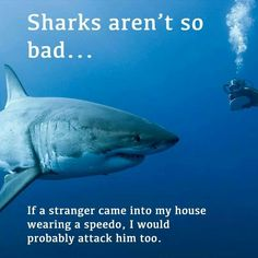 Can't blame sharks for doing that! No one wants a stranger in a speedo in their house!