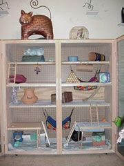Pet Rats Build Your Own Rat Wire Cage ...........click here to find out more http://googydog.com