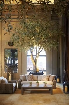 Restoration Hardware's Boston Flagship Store. Outdoor furniture is displayed in the top-floor conservatory.
