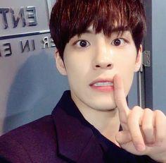 Wonpil (DAY6) ƒσłłσω: @AlienGabs51 σห тω¡ттεя Park Sung Jin, Park Jae Hyung, Hyun Kim, Kim Wonpil, Day6, Shinee, Kpop, Happiness, Icons
