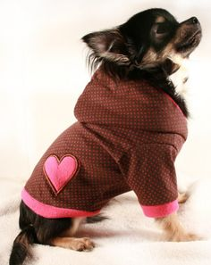 Valentine's Day Clothes / Hoodie Gifts for the Puppy Dog:  Dog Valentine's Heart Hoodie by Petit Dog Apparel @ Etsy