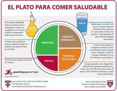 """Harvard mejora la traducción al español del """"Plato para comer saludable"""""""