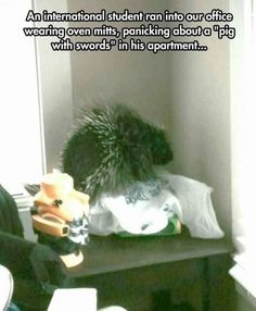 Heroes. This international charmer who figured out a better name for a porcupine!