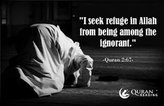 """I seek refuge in Allah from being among the ignorant."" (Quran 2:67)"