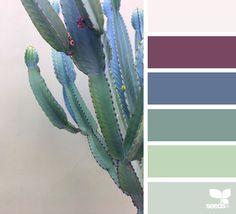 { cacti color } image via: @ColoreSaturo