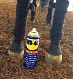 Top Ten Easy and Simple Horse Show Life Hacks - lots of great ideas!: